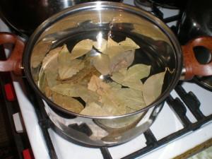 Приготовление отвара лаврового листа