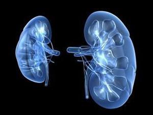 Пиелонефрит – причина болей внизу живота