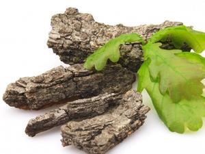 Кора дуба для лечения цервицита