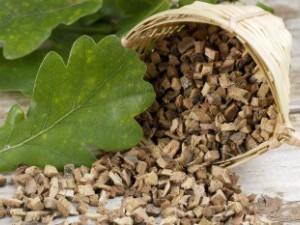 Польза дубовой коры для лечения бартолинита