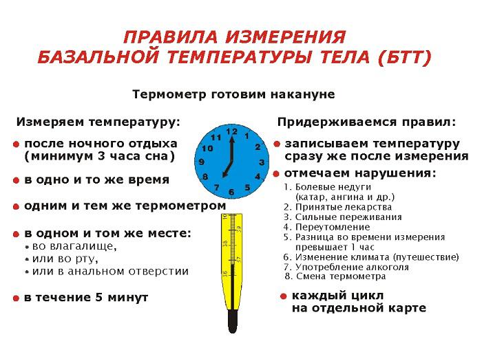 Правила измерения базальной температуры