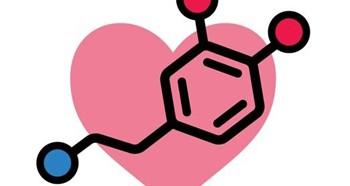 Важность гормона дофамин