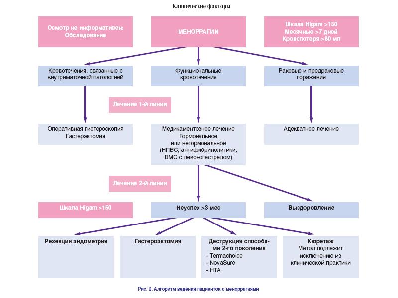 Причины и алгогритм действия при меноррагиях