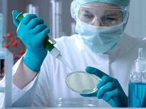 Исследование мазка для диагностики молочницы