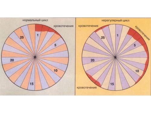 Нерегулярный цикл месячных
